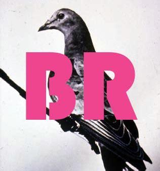 Critical poetry review magazine reviews
